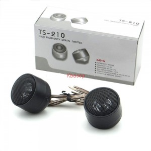 TS-210 комплект пищялки